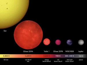De bruine dwerg ligt qua grootte tussen rode dwergsterren en gasreuzen in.