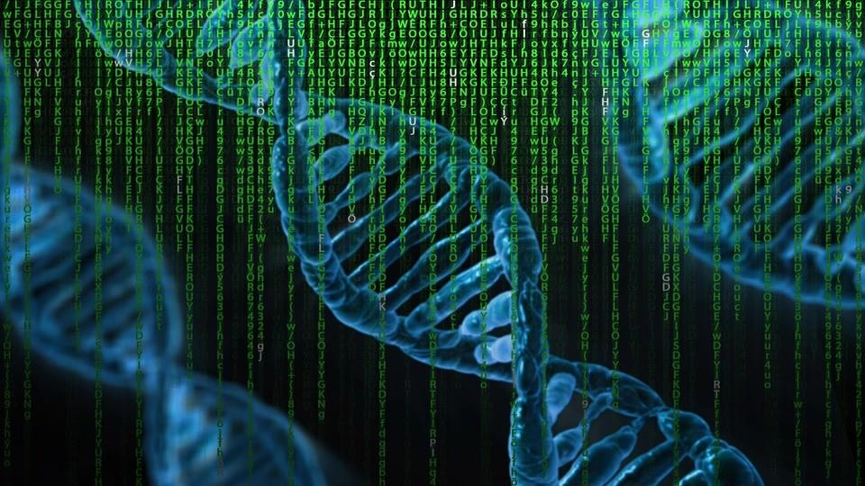 DNA-computers zijn zeer klein en zuinig. Ze beloven denkende medicijnen mogelijk te maken en nog veel meer...