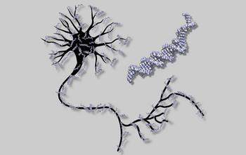 Neuronen kunnen ook uit DNA bestaan in plaats van uit cellen. Wel moet je héél veel geduld hebben...