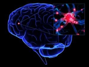 Kunstmatige breinstimulatie met magneetvelden: de nieuwe drug? Bron: Case Western Univ.
