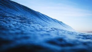 In plaats van te zwemmen in de rode zee vol haaien die elkaar opvreten, is een sprong in de blue ocean vol mogelijkheden doorgaans slimmer.