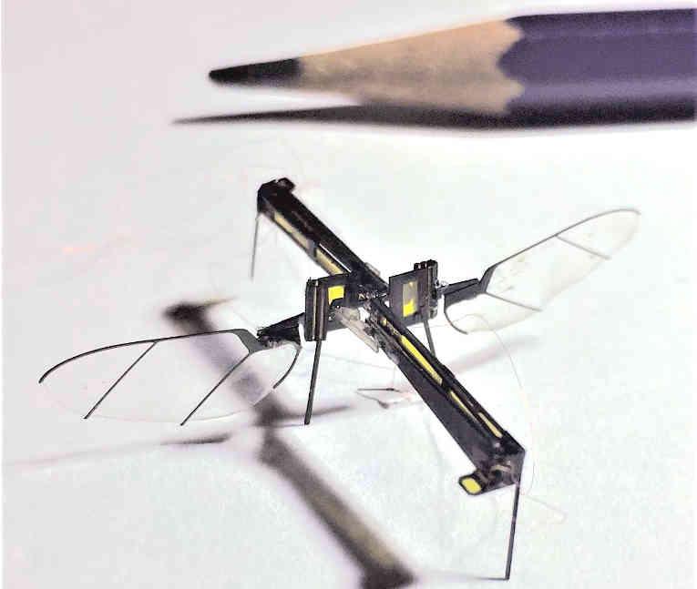 Drones als de Robofly van de Universiteit van Washington zijn in de iets verdere toekomst, als er een compacte energiebron ontwikkeld is, ook in te zetten als nanowapens. Bron: UW, Usa