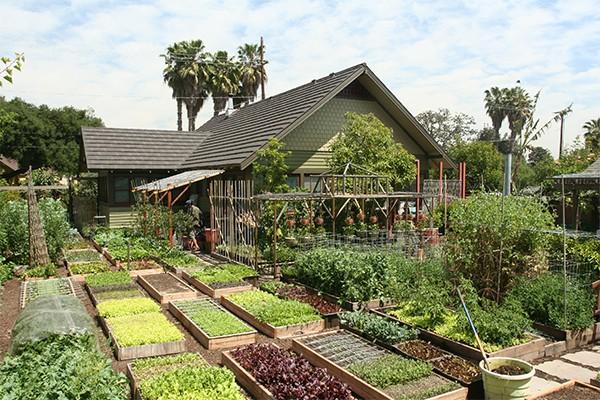 Urban Homestead in Los Angeles slaagt er in op slechts 500 vierkante meter, de oppervlakte van een grote tuin, 3500 kg voedsel per jaar te produceren. Wel is de hoeveelheid zonneschijn in Zuid-Californië twee keer zo hoog als hier in Nederland. Bron: urbanhomestead.org