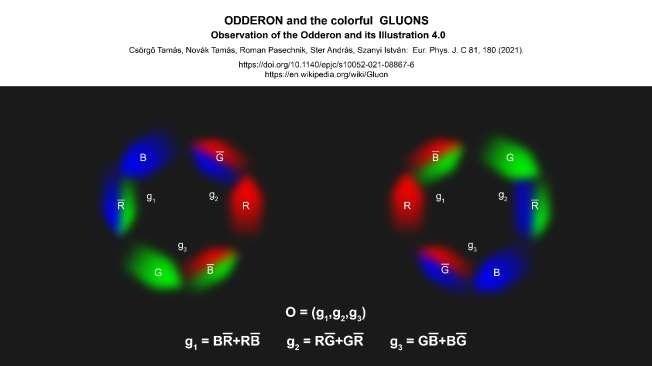 Het odderon bestaat uit een zeer kortdurende combinatie van gluonen.